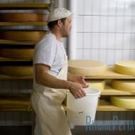 The cheesemaker