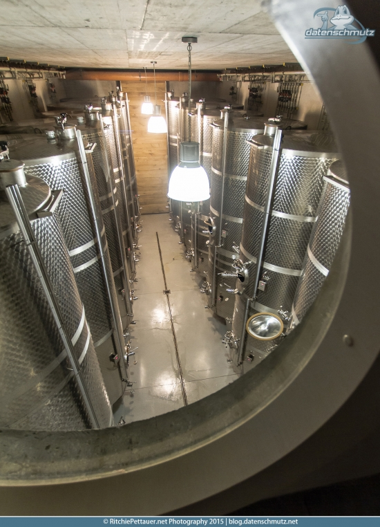 Vinification Tanks at Marov Estate.