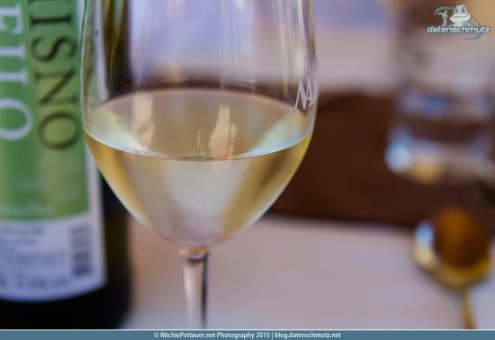 Wine-Tasting at Marov Estate